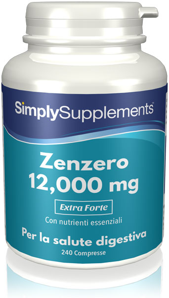 240 Tablet Tub - ginger supplement