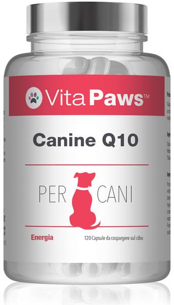 Canine Q10